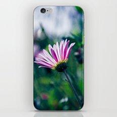 Flowers in Paris 1 iPhone & iPod Skin