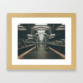Jamaica Queens Framed Art Print