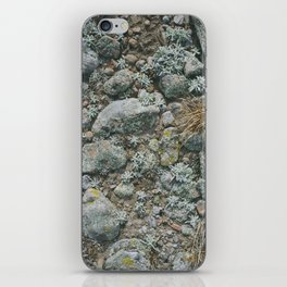 rabbit mountain iPhone Skin