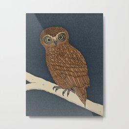 Boobook Owl Metal Print