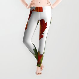 Red Cosmos Flower In A Meadow Isolated on White Leggings
