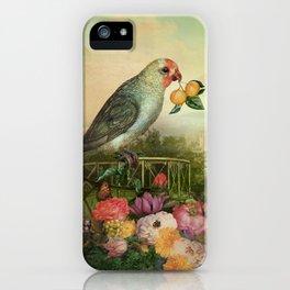 Mandarin Basilic iPhone Case