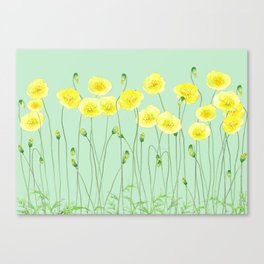 Yellow Wildflowers II Canvas Print