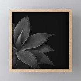 Agave Finesse #12 #tropical #decor #art #society6 Framed Mini Art Print