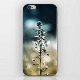 Ametrin iPhone Skin