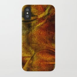 Terra 21 iPhone Case