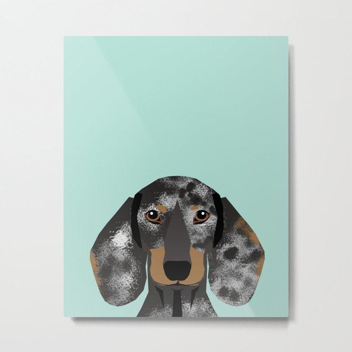 Doxie Dachshund merle dapple dog cute must have dog accessories dog gifts cute doxies dachshunds des Metal Print