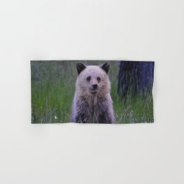 The most adorable grizzly bear cub in Jasper National Park | Canada Hand & Bath Towel