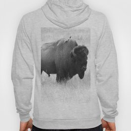Bison - Monochrome Hoody