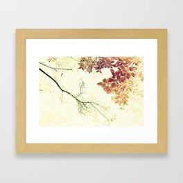 Barren w/Abundance - IA Framed Art Print