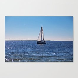 Introspective Insights Canvas Print