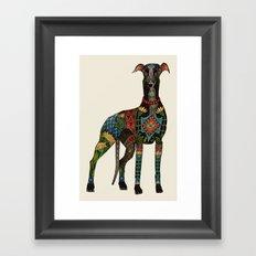 greyhound ivory Framed Art Print