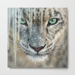Snow Leopard - Blue Ice Metal Print