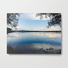 Minnesota Summers Metal Print