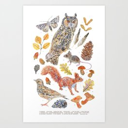 Autumn Wildlife - Annotated Art Print
