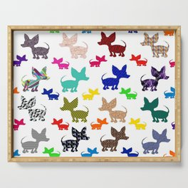 colorful chihuahuas on parade  Serving Tray