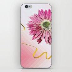 pink gerbera daisy with ribbon iPhone & iPod Skin