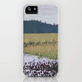 The Grassy Bay, Algonquin Park iPhone Case