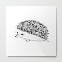 Porcupine | Animal Illustration Metal Print