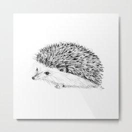 Porcupine   Animal Illustration Metal Print