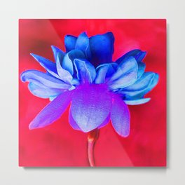 Blue Flower Metal Print