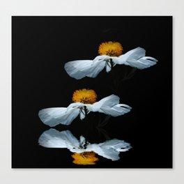 Anemonenflug Canvas Print