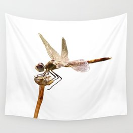 Dragonfly Resting On Seed Head Isolated Wall Tapestry