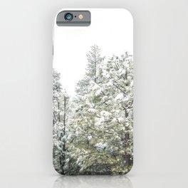 Lapse of Snow iPhone Case