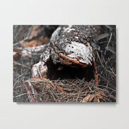 natural abstract Metal Print