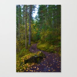 Walking along the Berg Lake Trail in Fall Canvas Print
