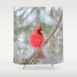 Winter's End Cardinal Shower Curtain