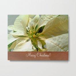 Pale Yellow Poinsettia 1 Merry Christmas S1F1 Metal Print