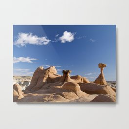 The Toadstool Rocks Metal Print