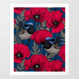 Fairy wren and poppies Art Print