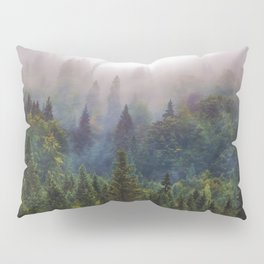 Wander Progression Pillow Sham