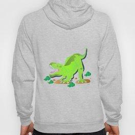 Dino - Bright Hoody