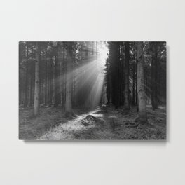 Into the Light in Monochrome Metal Print