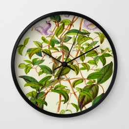 Clematis Campaniflora Vintage Botanical Floral Flower Plant Scientific Illustration Wall Clock