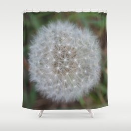 Dandelion Florets waiting to fly off Shower Curtain