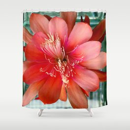 Flamingo Floaty Shower Curtain