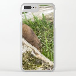 Weasel. Clear iPhone Case