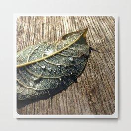 waterdrops Metal Print