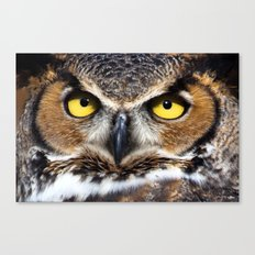 Great Horned Owl Face Canvas Print