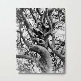 Twisted And Gnarled Metal Print