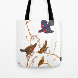 Red winged Starling, or Marsh Blackbird Tote Bag