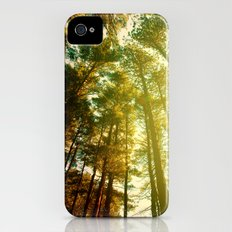 Forest iPhone (4, 4s) Slim Case