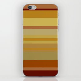 Desert Stripes iPhone Skin