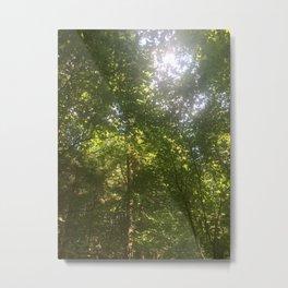 Adirondack Skylight Metal Print