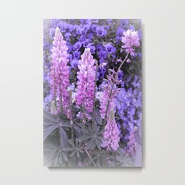 Lively Lupines Metal Print
