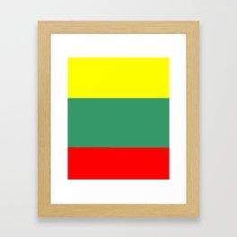 Flag of Lithuania – Lietuva,Lithuanian,Lietuvos,vilnius,kaunas,baltic,viking. Framed Art Print